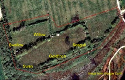arial map of site